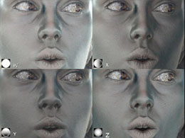Four images of the specular reflection